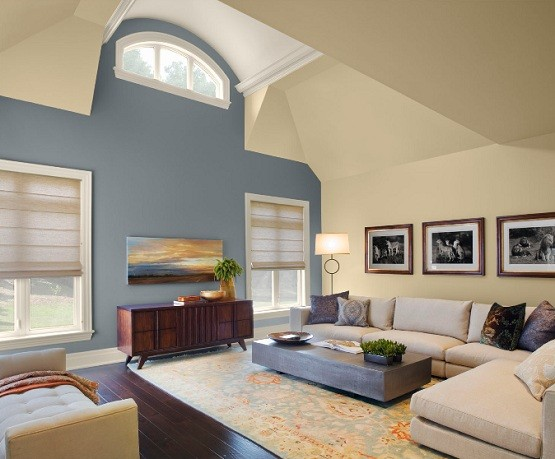 Great Living Room Paint Color Schemes 555 x 459 · 74 kB · jpeg