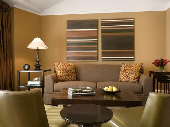 Color Ideas for Living Room Walls – dark brown color