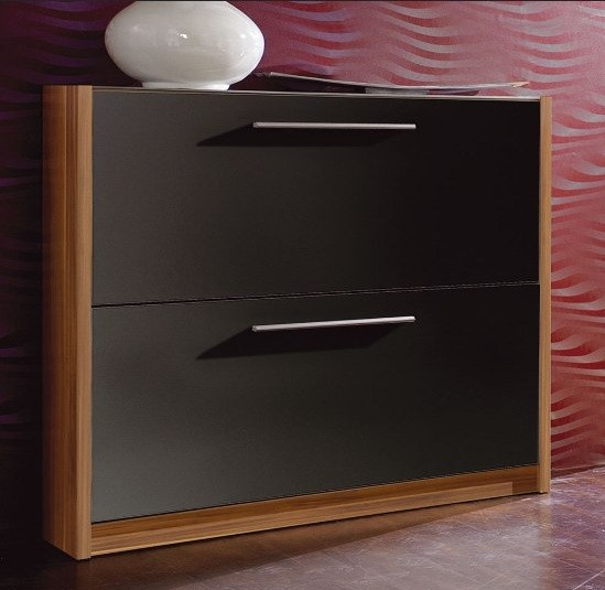 Shoe Cabinet with Doors for Interior Furniture