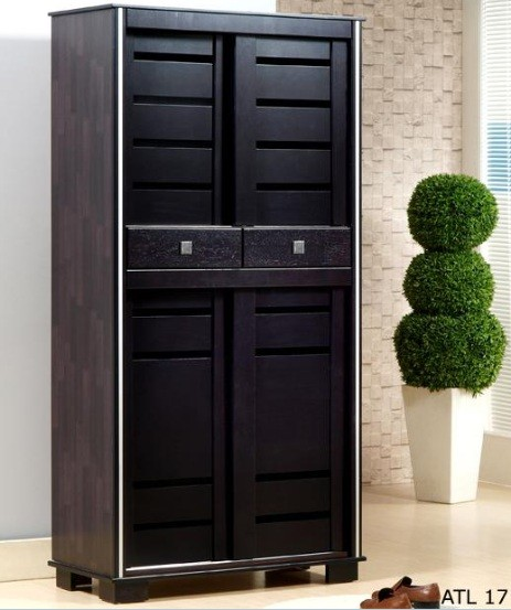 Dark Brown Tall Shoe Cabinet With Doors Home Interiors