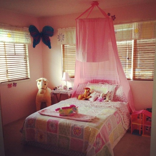 Hoop bed canopy for girls