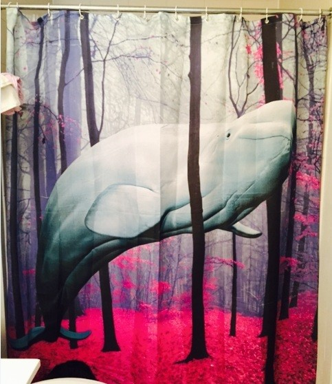 best shower curtains. colorful wallpaper bathroom shower curtain ideas best curtains