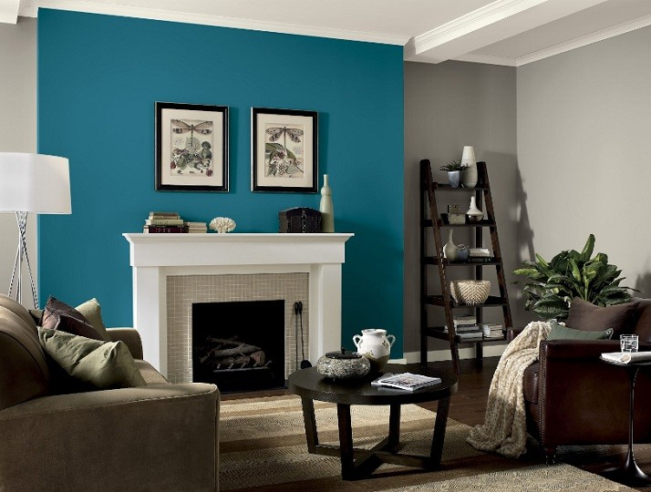 Dove Blue Accent Wall Color For Living
